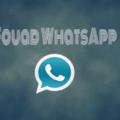 fouad-whatsapp-310x205-1[1]